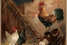 chickens. / chickens are great for the backyard and helping you get self sufficient