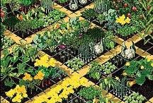 food garden.