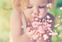 . . Soft & Pastel . .