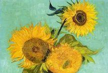 sunflowers / sunflower paintings