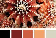 Color palette / #inspiration #idea #mix