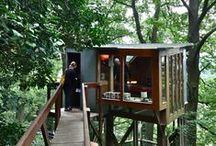 Treehouses / Treehouses around the world