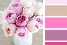 Color Palette Flowers