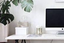 • Home • Workspace