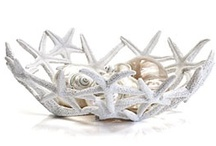 Starfish in Design