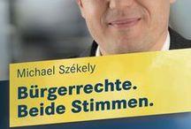 Bundestagswahl 2013 / Wir werben um beide Stimmen für die FDP Erlangen. Damit Erlangen mit einem profilierten und unabhängigen Kandidaten im Bundestag vertreten ist.