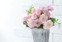 ♡ flowers / Gorgeous blooms, plants and flowers