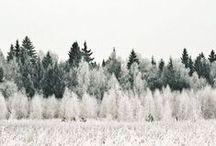 ♡ { season } winter / Winter, Christmas, snow, reindeers!
