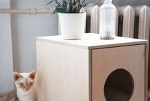 for cats / Accessories, furnitures and fun for cats
