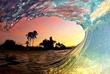Life's a Beach / by Belinda Sue