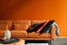 Solvari Oranje / Oranje, het zit in ons DNA! Niet alleen is oranje de kleur van ons elftal en van ons mooie land - bij Solvari zorgt het voor een vrolijke 'v' in ons logo.    Oranje staat symbool voor enthousiasme, vrolijkheid, creativiteit, aantrekkingskracht, succes, motivatie en stimulatie.