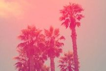 Photos Pink Light / photos pictures pink light