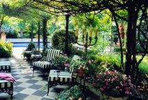 Home : jardin // garden