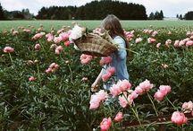 {floral}