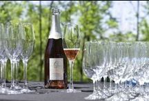 Our wines / 13th Street Winery in St Catharines ON