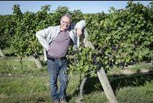 13th Street Winemaker / 13th Street Winery in St Catharines Ontario Winemaker Jean Pierre Colas