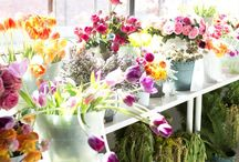 .flowery flowery flowers.