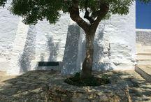 Skopelos / Skopelos, a fantastic island in the Northern Sporades, Greece