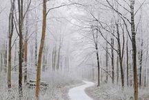 [ winter ]