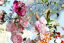 ⟨ blooming ⟩