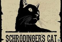 Schrodinger's Pins / They're here and not here.