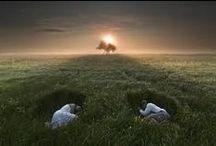Metapherin / Magia fotografiei suprarealiste