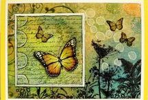 Butterfly Cards & Artwork