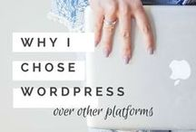 WordPress HowTo's / All about WordPress, Plugins, Themes & Hacks