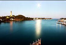 Local Scenery in Jupiter, FL / Some of the beautiful scenery around the CleanShake headquarters.