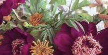 tamarind, ruby, coriander, tumeric