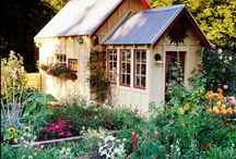 Garden Sheds & Greenhouses / Green gardening sheds, greenhouse, hoop houses.