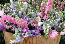 flowers/garden decor