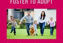 Foster to adopt / Information about the UK fostering to adopt process.