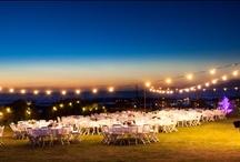 WEDDINGS IN CORSICA / Weddings in Corsica by Studio PLP photography
