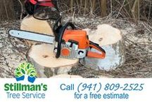 """Stillman Services / At Stillman's we have """"grown"""" our business by arriving with a good attitude and a smile, and doing competent work. We are always pleased to serve you.We specialize in tree trimming and tree removal. We always clean up the mess and NEVER take money until the job is completed to your satisfaction. When we're finished, the only evidence that we've ever come, is in the finished results."""