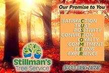 """About Stillman's Tree Service / At Stillman's we have """"grown"""" our business by arriving with a good attitude and a smile, and doing competent work. We are always pleased to serve you.We specialize in tree trimming and tree removal. We always clean up the mess and NEVER take money until the job is completed to your satisfaction. When we're finished, the only evidence that we've ever come, is in the finished results."""
