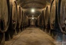 Tuscany Chianti Tours & Things to do