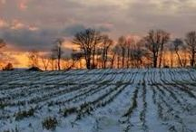 Winter / Something told the wild geese it was time to go.