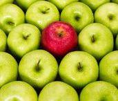 Nutrition : les top aliments / Tout savoir sur les vertus des aliments ! C'est l'objectif de ce tableau qui passe au crible les champions de la nutrition : du citron au chocolat en passant par les légumineuses, le fromage ou le poisson... Vous saurez tout sur leurs bénéfices santé.