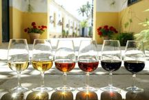 Portuguese and Spanish wine / There are lots of great wines in Spain and Portugal. It's far cheaper buying wine when your in the Spain or Portugal on holidays, so enjoy.