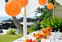 Tropical Wedding Party / Decorations and idea about tropical wedding party and ceremony.