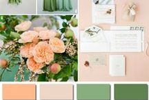 Wedding Color Palettes / Here are current wedding color trends that we love! Rembrandt Yard Art Gallery & Event Center #boulder #colorado #weddings #weddingcake #rembrandtyard #coloradoweddingvenue