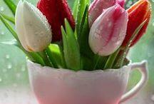 Springtime wiosna