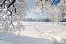 Winter / Zie het licht in de donkere dagen. Winterwonderland. En oh... die Elfstedentocht!
