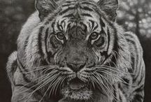 Breathtaking Drawings To Try / Truly spectacular drawings for everyone to give a try!