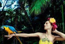 Welcome to the jungle / Jungle attire safari going on an adventure