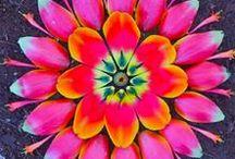Natuurlijk, mandala, heilige geometrie, levensbloem. / Cadeautjes van de natuur. Een kunstwerkje waarin onze verbondenheid tot uiting komt. Heelheid.