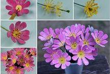 Papírové kytky