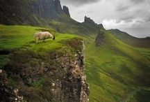 Scotland / Scotland! Edinburgh! Scottish Highlands! Scottish Castles! All that stuff #scotland #highlands #castles #edinburgh