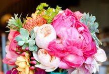 Natur, Blomster & Kjøkkenhage